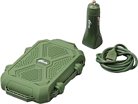 Портативное зарядное устройство Ritmix RM-3499DC (зеленый) -