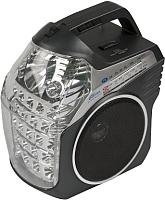 Радиоприемник Ritmix RPR-505 -
