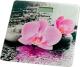 Напольные весы электронные Sakura SA-5072F (орхидея) -