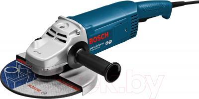 Профессиональная угловая шлифмашина Bosch GWS 20-230 H Professional (0.601.850.107) - общий вид