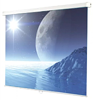 Проекционный экран Ligra Ecoroll Matt White 043243 (203x203) -