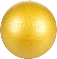 Гимнастический мяч Gymnic Softgym Over 95.09 -