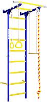 Детский спортивный комплекс Romana Карусель S1 ДСКМ-2С-8.06.Г3.490.18-13 (синяя слива) -