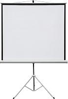 Проекционный экран 2x3 Profi mobile ETPR1818R (177x177) -
