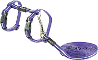 Шлея с поводком Rogz AlleyCat Tuig+Lijn XS / RCLJ216E (фиолетовый) -