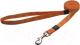 Поводок Rogz K2 Lijn 20мм / RHL25D (оранжевый) -