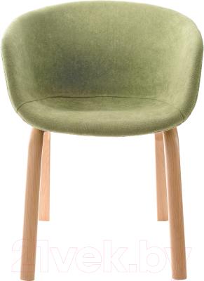 Стул Mio Tesoro Итри SC-256F (зеленый)