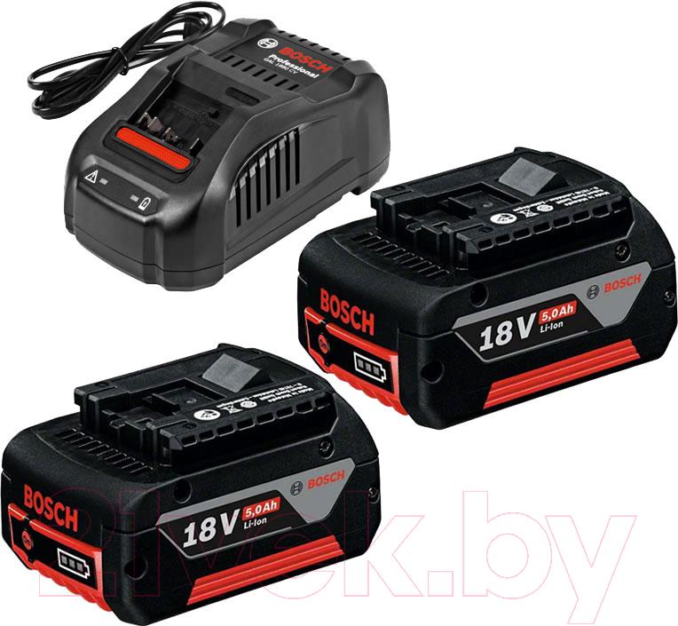 Купить Набор аккумуляторов для электроинструмента Bosch, GAL 1880 CV Professional + зарядное устройство (1.600.A00.B8J), Китай