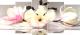 Картина модульная Декарт 8Л0525 -