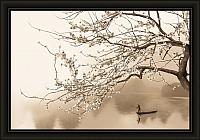 Картина Декарт 8Л0552 -