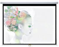 Проекционный экран Classic Solution Premier Orion II 244x244 (W 234x176/3 МW-FC/W) -