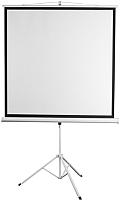Проекционный экран Digis DSKD-1104 (178x181) -