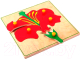 Развивающая игра Играй с умом Рамка-вкладыш Цветок и его части / 1447 -