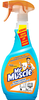 Средство для мытья окон Mr. Muscle Профессионал для стекла и поверхностей. После дождя (750мл) -