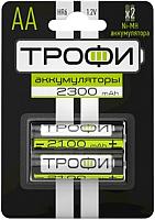 Комплект аккумуляторов Трофи HR6-2BL 2300mAh / C0032100 -