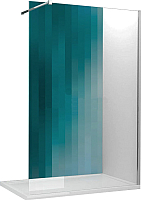 Душевая стенка Roltechnik SaniPro Walk Pro/90 (хром/прозрачное стекло) -