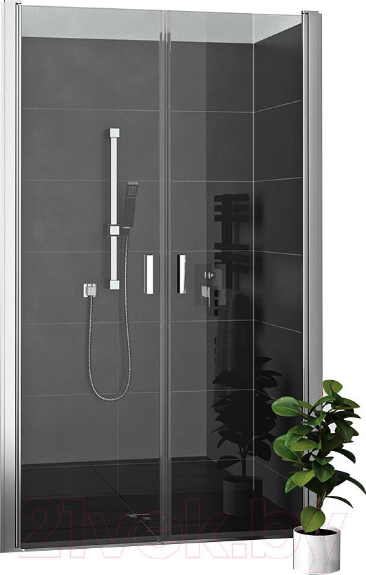 Купить Душевая дверь Roltechnik, Lega Lift Line LZCN2/90 (хром/прозрачное стекло), Чехия