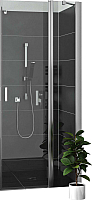 Душевая дверь Roltechnik Lega Lift Line LZDO1/100 (хром/прозрачное стекло) -