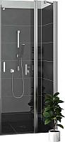 Душевое ограждение Roltechnik Lega Lift Line LZDO1/120 (хром/прозрачное стекло) -