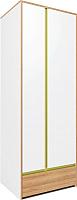 Шкаф Заречье Радуга Р2 (дуб ривьера/белый/зеленый) -