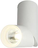 Точечный светильник Omnilux Ultimo OML-100209-10 -