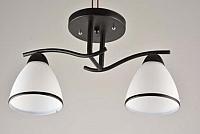 Потолочный светильник Mirastyle KL-7412/2 -