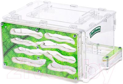 Муравьиная ферма AntHouse Wild (Green)