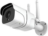 IP-камера Ginzzu HWB-2034A -