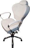 Кресло парикмахерское Kuasit Ku 230/h (белый) -