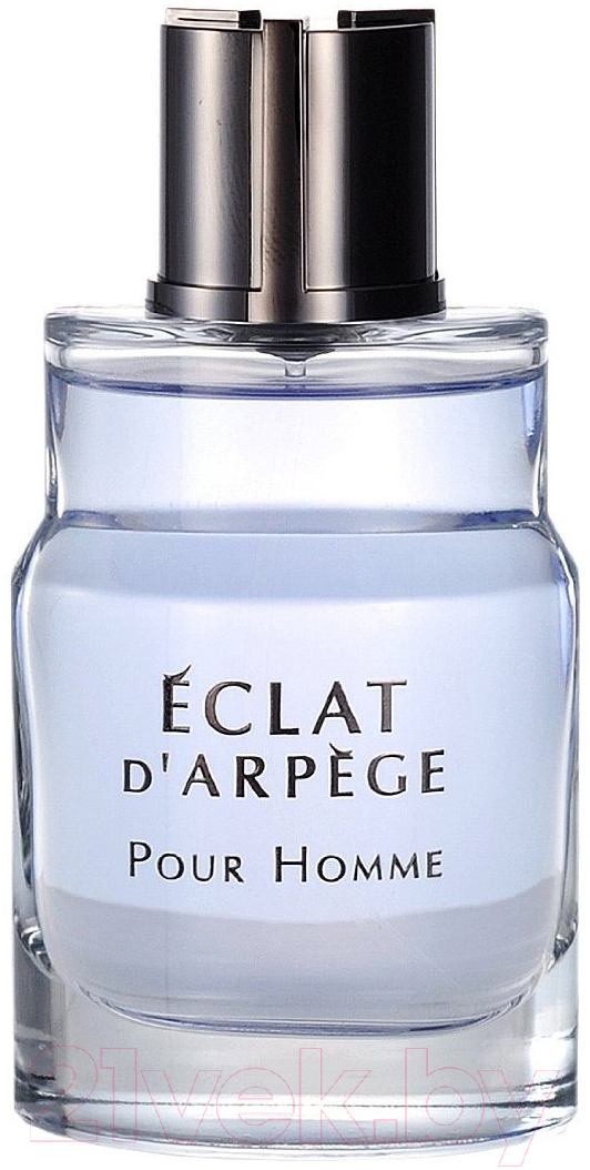 Купить Туалетная вода Lanvin, Eclat D'arpege Pour Homme (100мл), Франция, Eclat (Lanvin)