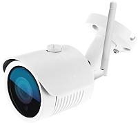 IP-камера Ginzzu HWB-2031S -