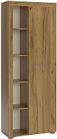 Шкаф с витриной Сакура Best №2.1 (дуб табачный) -