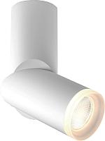 Спот Elektrostandard DLR036 12W 4200K (белый матовый) -