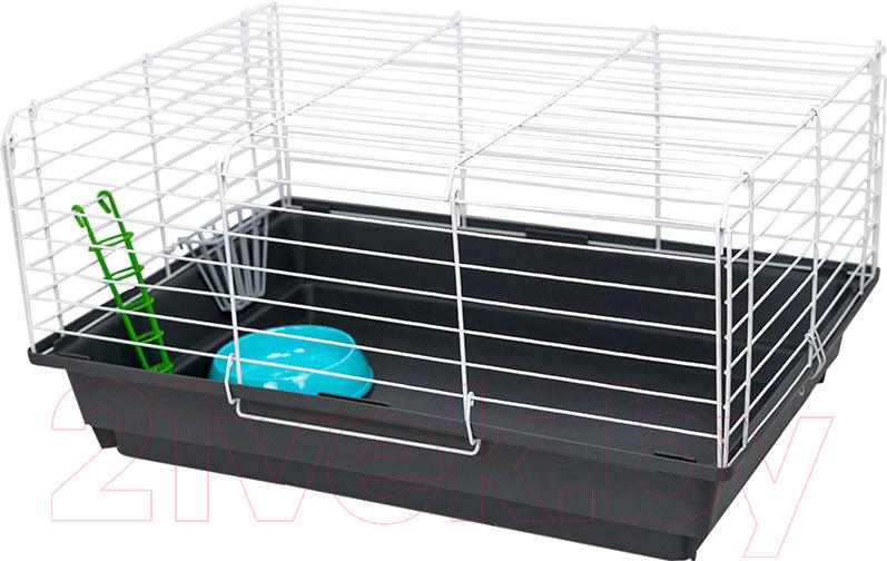 Купить Клетка для грызунов ЕСО, Роджер-2 / 4173, Россия, белый