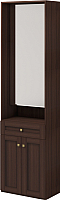 Шкаф Ижмебель Скандинавия 28 с зеркалом (дуб тортона темный) -