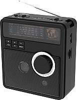 Радиоприемник Ritmix RPR-210 (черный) -