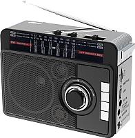 Радиоприемник Ritmix RPR-205 (черный) -