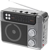 Радиоприемник Ritmix RPR-200 (серый) -