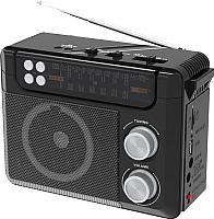 Радиоприемник Ritmix RPR-200 (черный) -