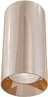 Потолочный светильник Maytoni Alfa C010CL-01RG -