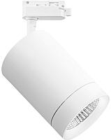 Трековый светильник Lightstar Canno 303264 -
