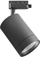 Трековый светильник Lightstar Canno 303274 -