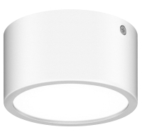 Светильник уличный Lightstar Zolla 380163 -