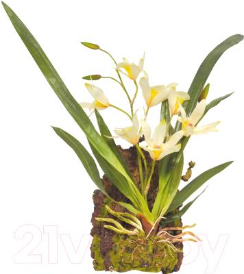 Декорация для террариума Lucky Reptile Hanging Orchid / IF-1 (белый)