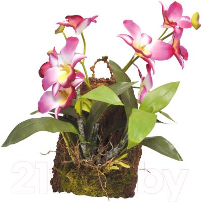 Декорация для террариума Lucky Reptile Hanging Orchid / IF-18 (розовый)