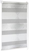 Рулонная штора Delfa Сантайм День Ночь Бола СРШ-01МК 42010 (43x160, белый/серебро) -