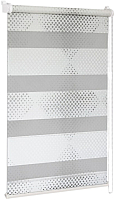 Рулонная штора Delfa Сантайм День Ночь Бола СРШ-01МК 42010 (62x160, белый/серебро) -