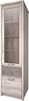 Шкаф-пенал с витриной Anrex Jazz 1V1D1S (каштан найроби/оникс) -