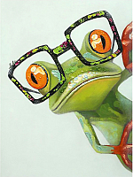 Набор алмазной вышивки Wizardi Лягушонок в очках / WD2362 -