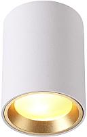Точечный светильник Odeon Light Aquana 4206/1C -